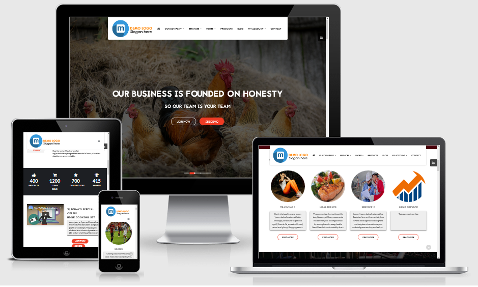 Modern and Responsive product website CMS